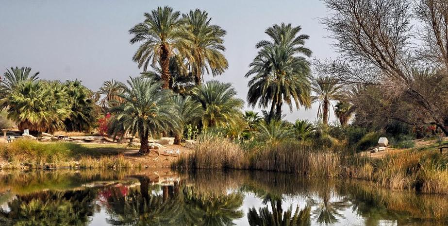 Crossing of the Morocco Saharan Desert